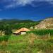 Селска картинка в Южен Пирин