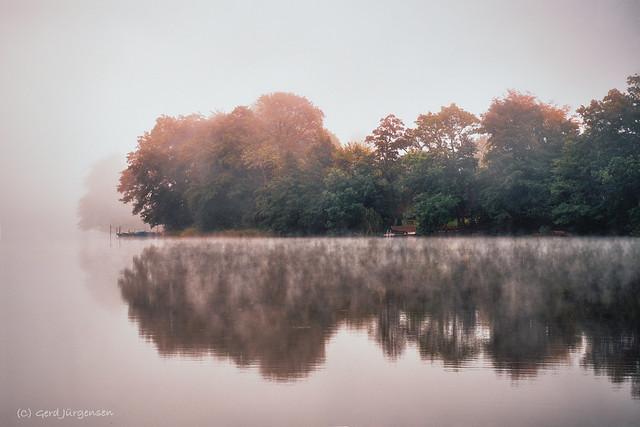 framed by fog