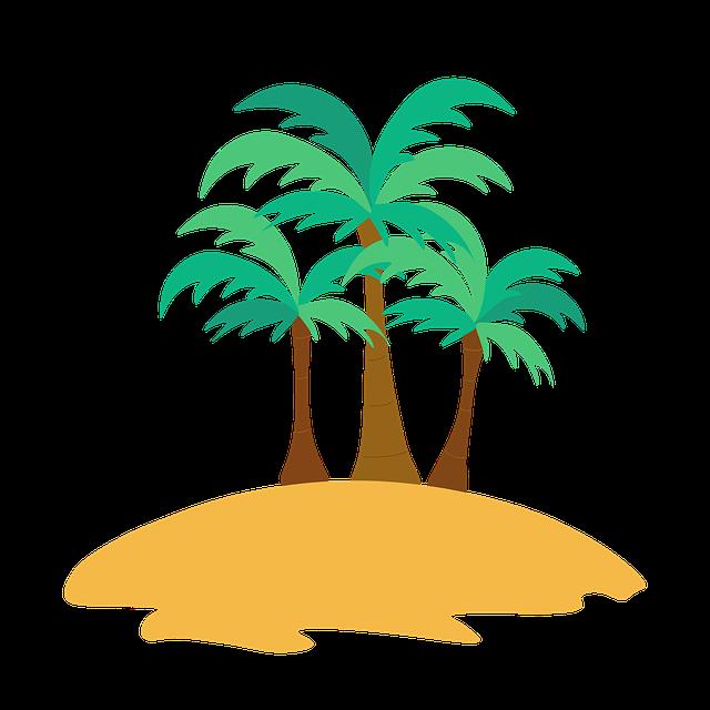 gambar flora di pantai pohon kelapa