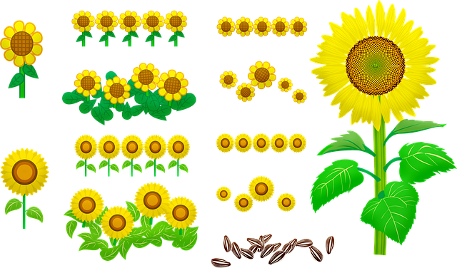 flora sunflower yellow