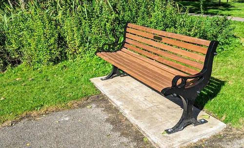 New 'in memory of' bench at Haslam Park | by Tony Worrall