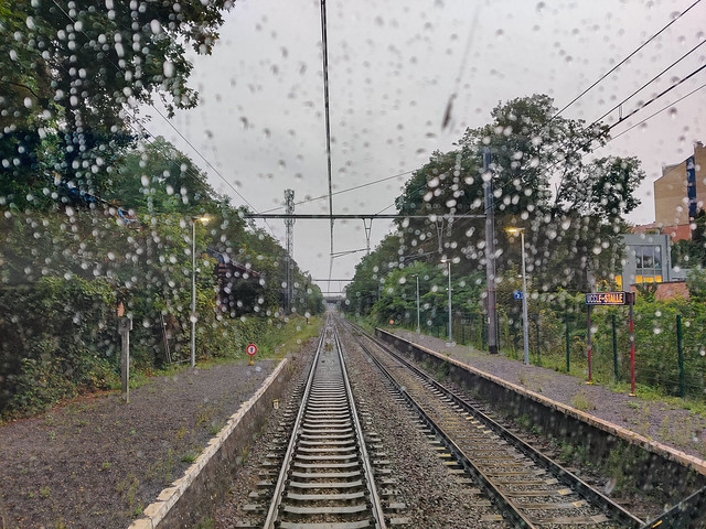 Rain on the Windshield.