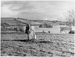 Standing stone, Loughbrickland, County Down