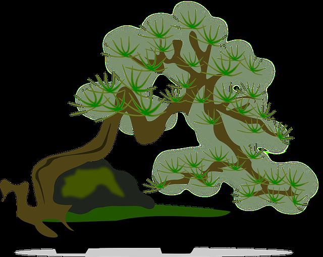 gambar flora bonsai