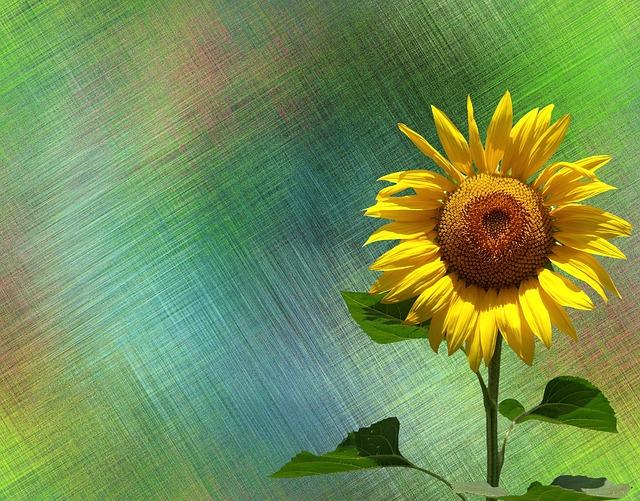 gambar bunga yang indah dan sulit ditiru