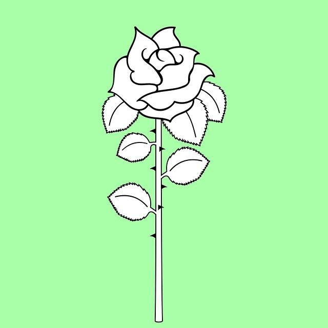 gambar bunga warna hitam putih