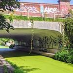 Bridge over the green canal at Preston