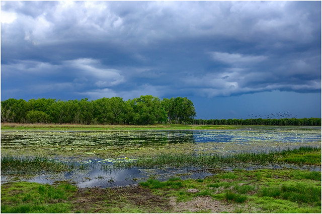 Early wet season storm approaching McMinns Lagoon Reserve, Darwin Rural Area, NT, Australia