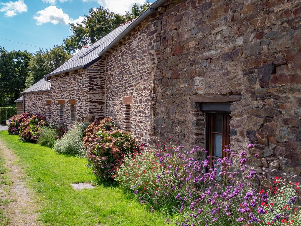 Dans in jardin breton suite... 50382290618_24061799df_b
