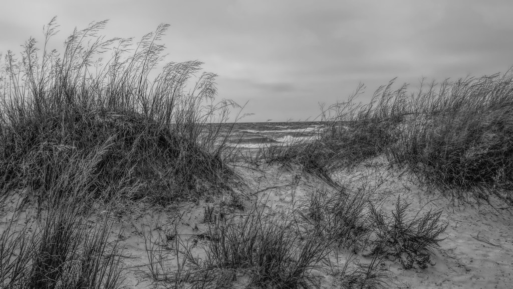 on the shores of Lake Huron. Sauble Beach Dunes