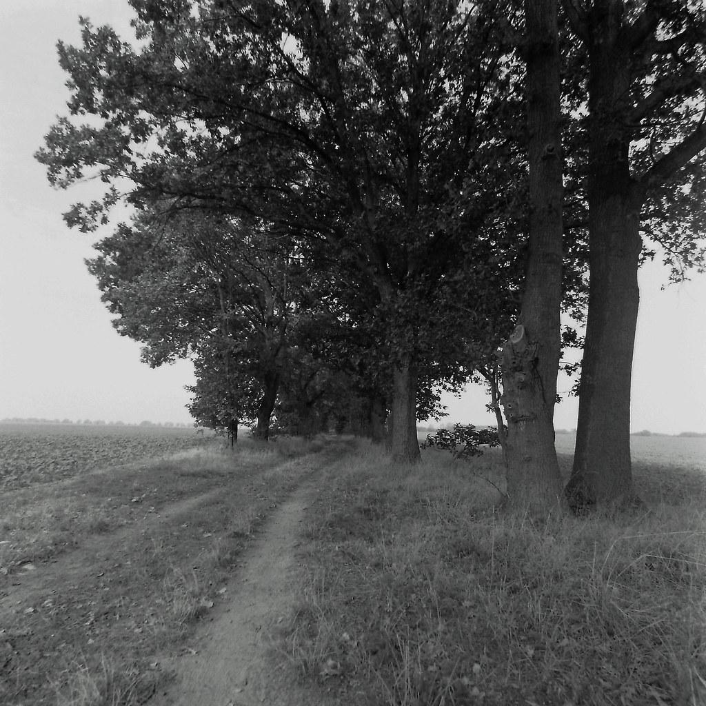Geheimnisvoller Weg in Brandenburg 23.9.2020