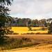 Raith Estate, Kirkcaldy by Briantc