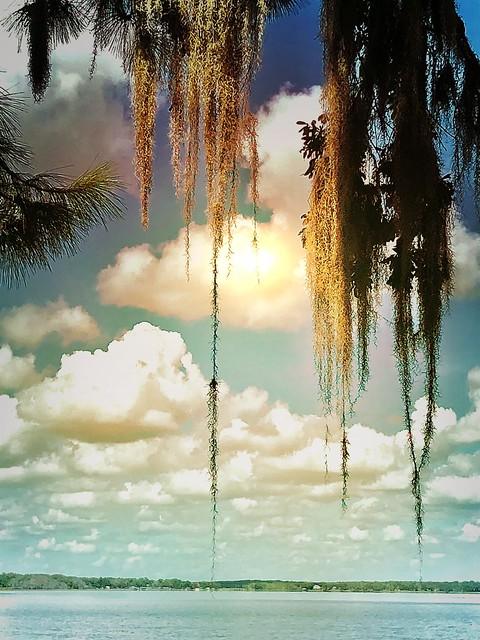 Florida lake