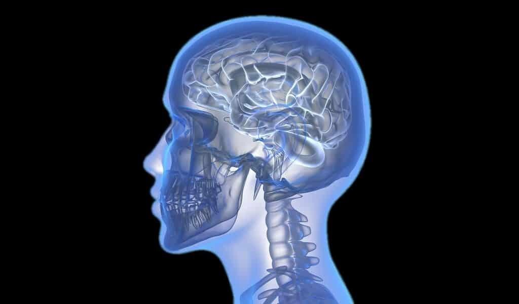 Des microrobots peuvent relier les cellules du cerveau en réseau