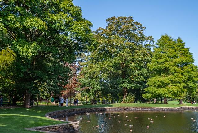 Last days of summer - Towneley Park , Lancashire - Sept . 2020