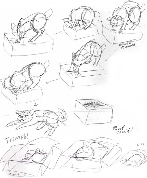 Studies of Stitch!
