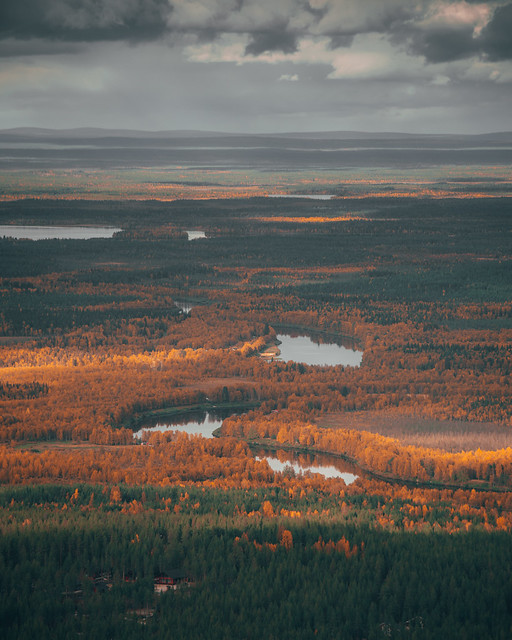 Something from our ruskareissu at finnish lapland
