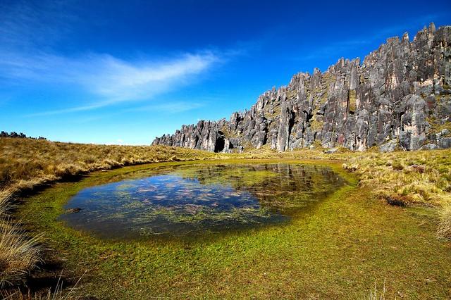 Bosque de Piedras de HUAYLLAY