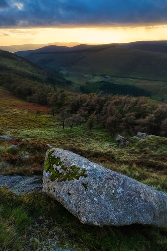 mourne mournemountains countydown northernireland ireland altaggartmountain valley trees sunset dusk forest rock view