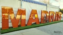 Madrid Rio con mi bici