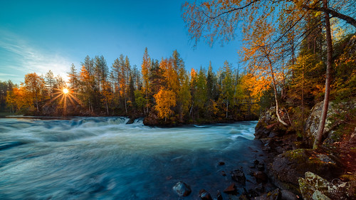rock tranquility peaceful nature water bracketing naturephotography bracketed trees tripod wideangle cascade north stunning outdoors autumn sunrise morning sunrays sun view scenery outside landscape natureview 10mm canoneosr5 nationalpark fallcolors iso100 viewingpoint magnificent landscapephotography clouds hdr samyangxp10mmf35 kuusamo myllykoski serenity beautiful river forest amateurphotography cliffs rocks finland tree oulankanationalpark f22 golden