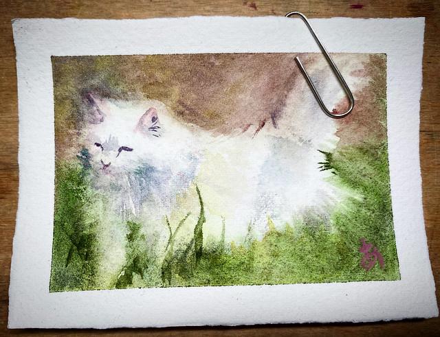 a tiny watercolour painting of a white cat. (20200926SAT)  #art #watercolour #watercolor #painting #process #tutorial #akolamble #ako #sydney #australia #artist #watercolorist  #水彩 #アート #猫 #白猫 #ミニチュア #watercolourakolamble #cat #whitecat #tinypainting