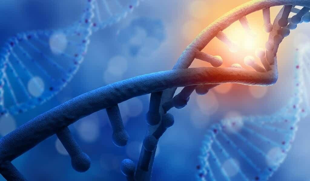 une-nouvelle-méthode-contrôle-des-gènes-par-la-lumière