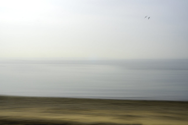 Sea Abstract
