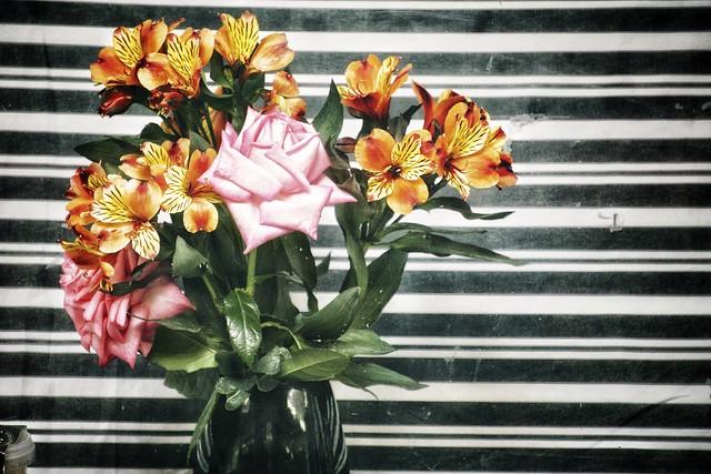 Rose and Alstroemeria