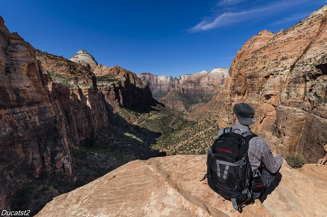 The big view, Zion National Park