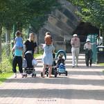 Families down Miller Park