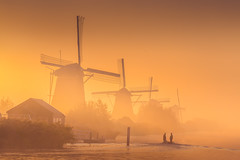 Dreamy Windmills