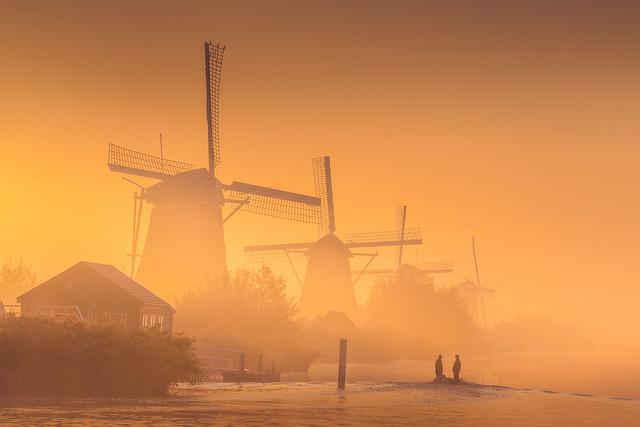 Dreamy Windmills