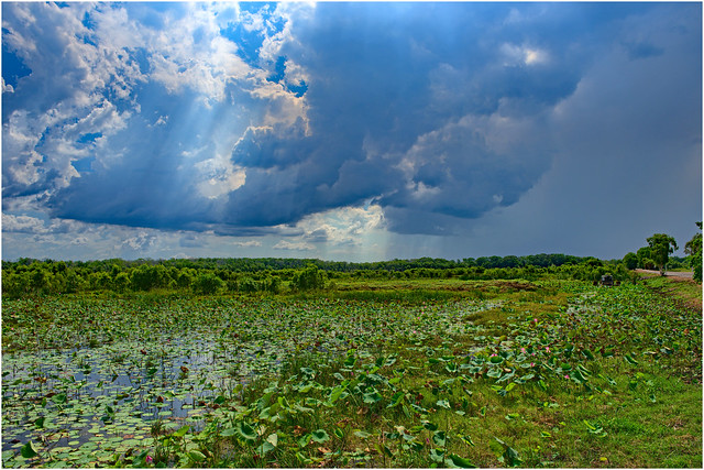 Another early wet season storm approaching Fogg Dam Conservation Reserve, Middle Point, Northern Territory, Australia