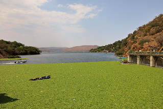 Hartbeespoort Dam. North West Province. South Africa. Sep/2020 | by EKatBoec