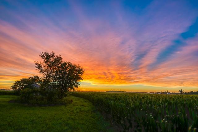 Summer Sunset (1)