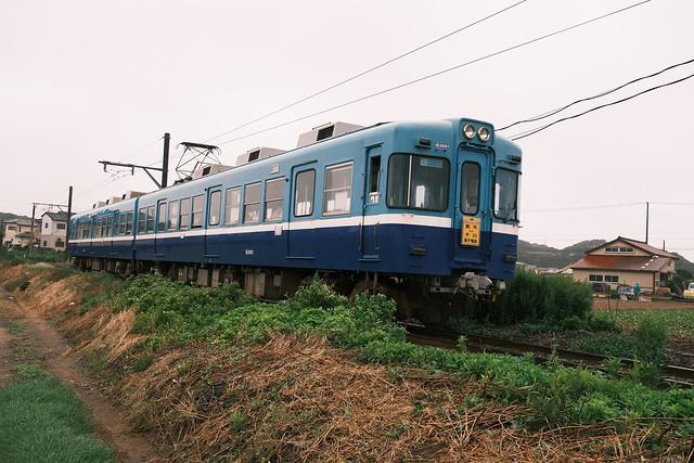 FXP31753