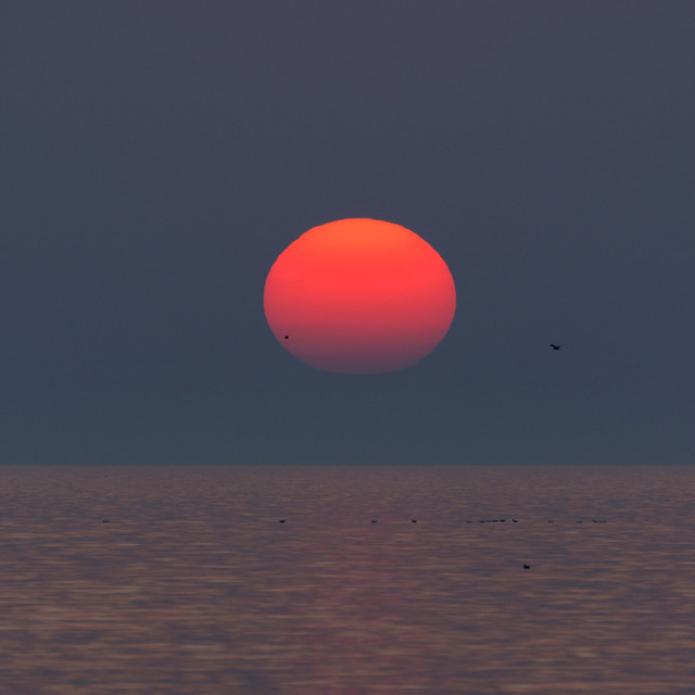 Sunset Lake Ontario - 0627