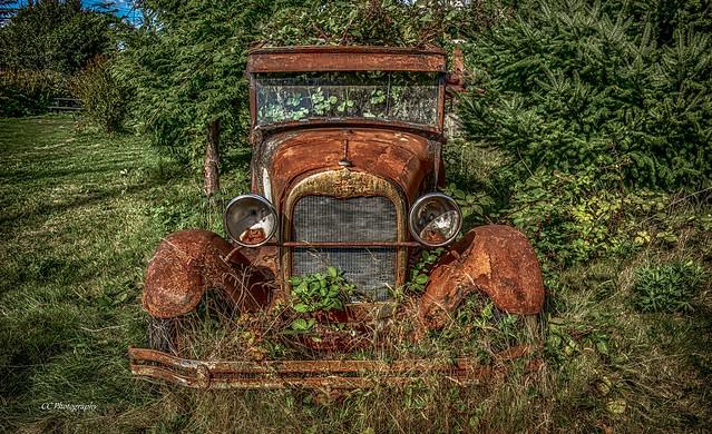Model A - Built Ford Tough