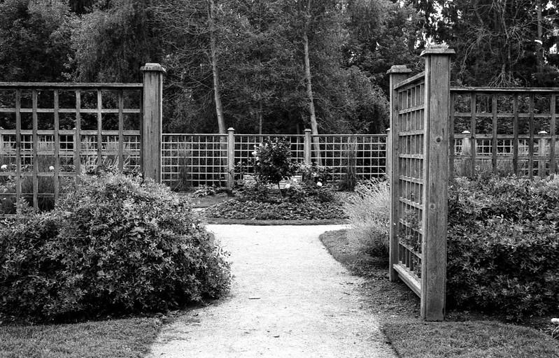 Entering the Rosegarden