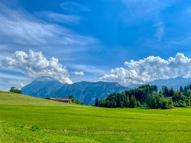 Field near Hechtsee with view of Zahmer Kaiser mountain range in Tyrol, Austria
