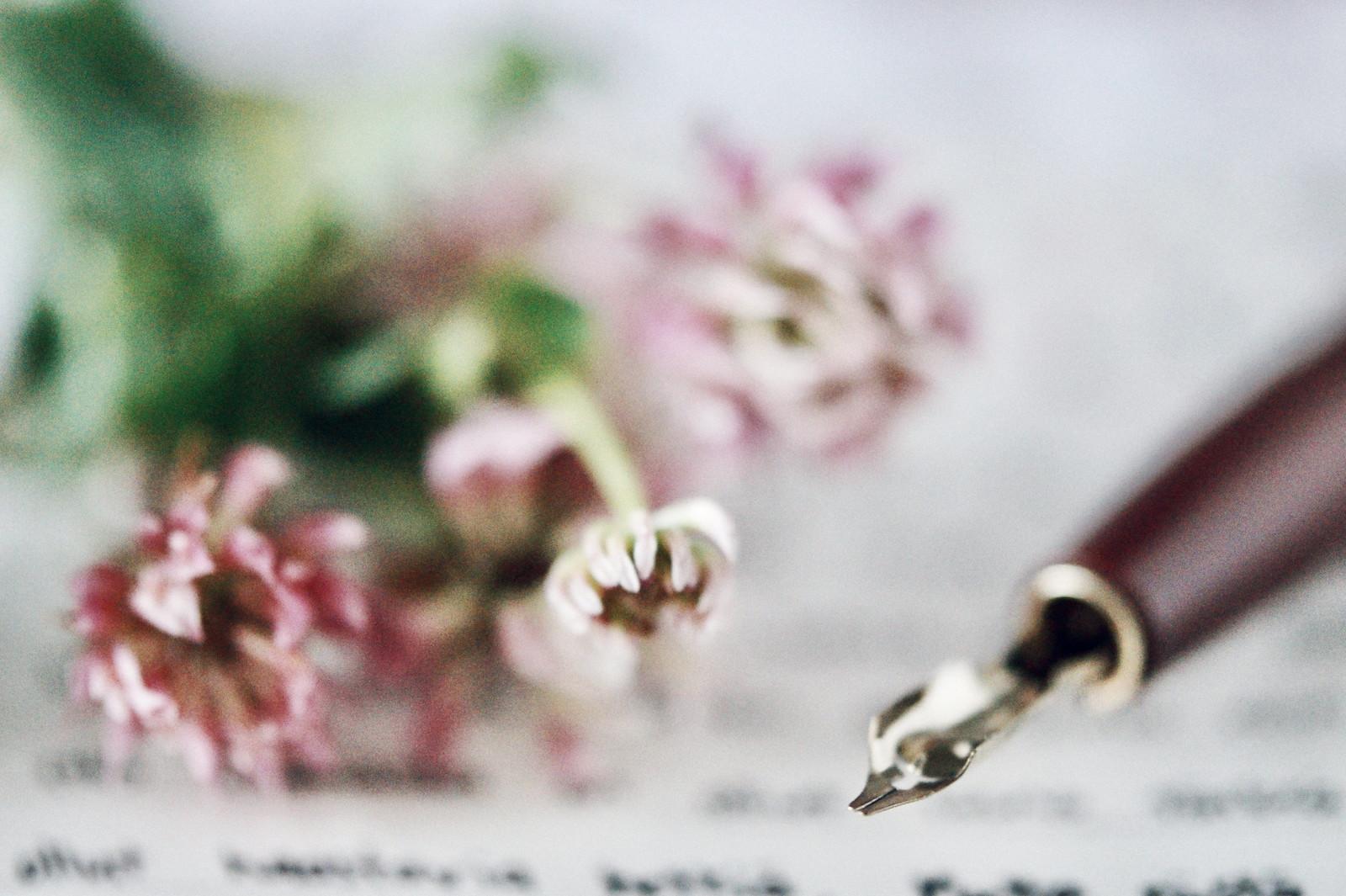 kalligrafiakynä-kirje-blogi