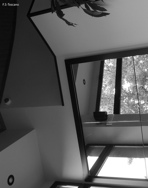 Indicios arquitectónicos 6. Architectonic traces 6.