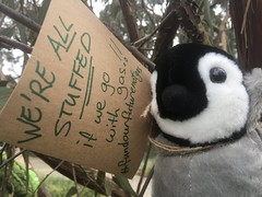 Penguin agrees... we are all stuffed if we go with gas. September 25 Global climate strike in Melbourne under pandemic lockdown.  #myMoreland #fundourfuturenotgas
