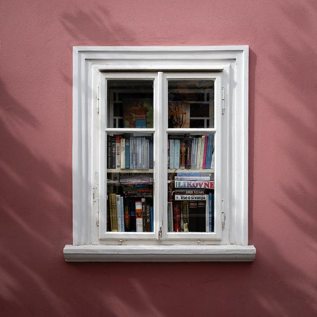 A window into...
