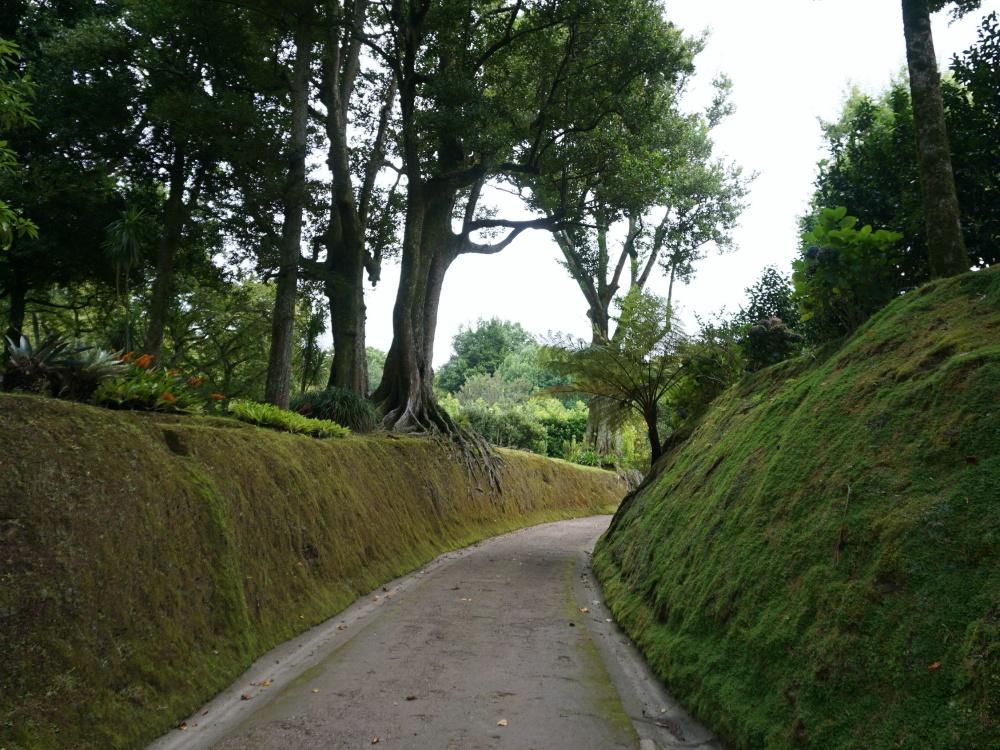 Terra Nostra Park Furnas