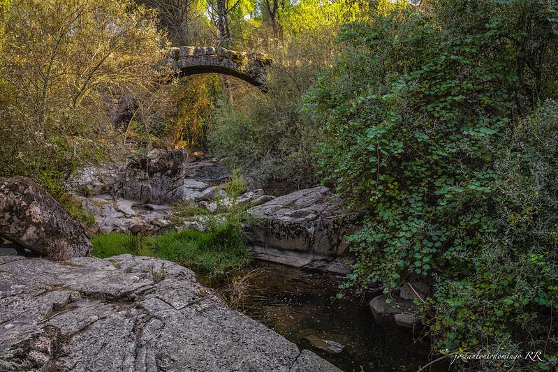 Puente Mocha (La Adrada)