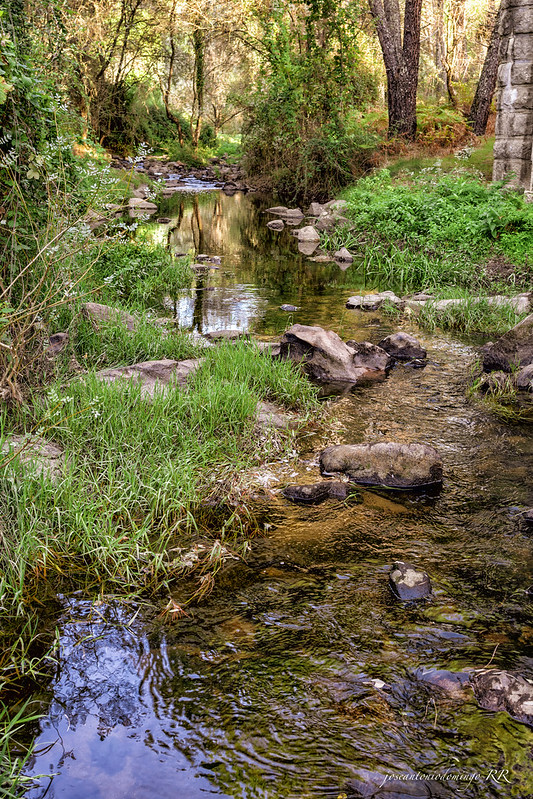 Aguas del Tiétar bajo el Puente Mocha