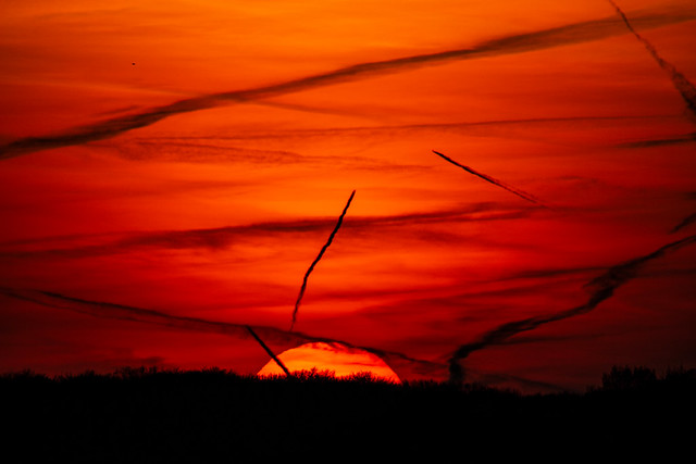 Sunset And Contrails