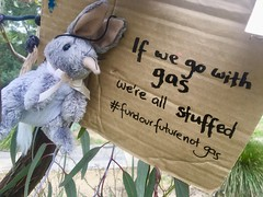 Kanga is adamant. We are all stuffed if we go with gas. September 25 Global climate strike in Melbourne under pandemic lockdown.  #myMoreland #fundourfuturenotgas